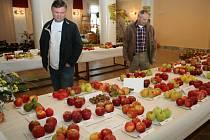Do třídenní zemědělské výstavy Dary jižní Moravy se zapojily všechny zemědělské, vinařské a chovatelské spolky z Velkých Pavlovic. Obnovily tam tradici.