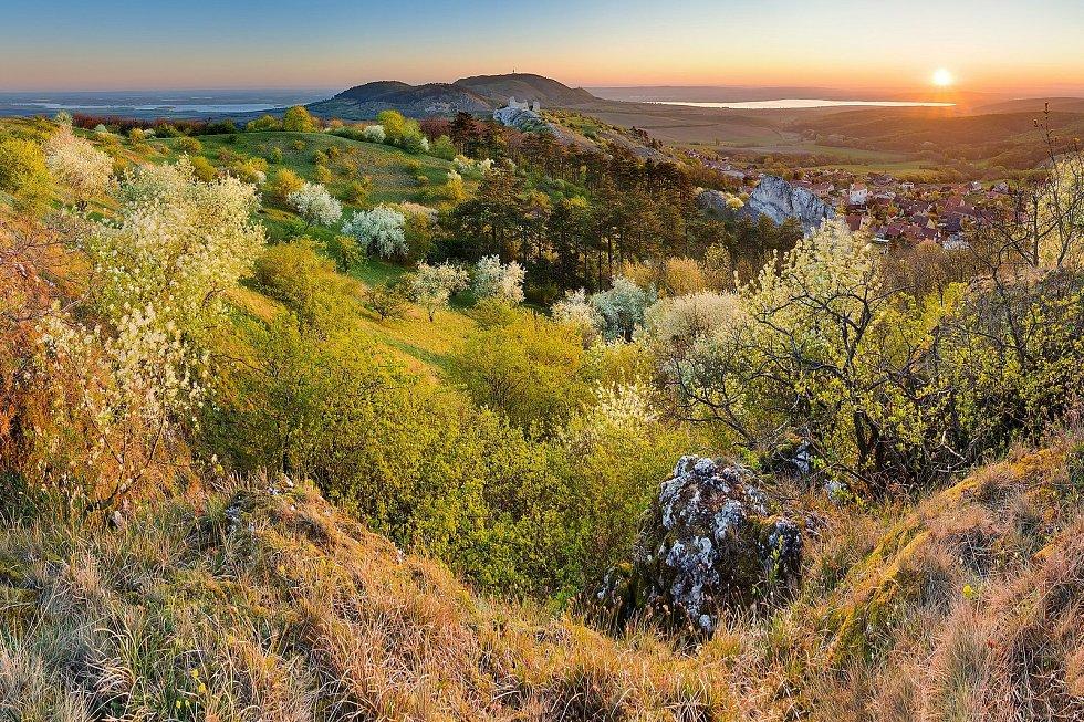 Rozkvetlá Stolová hora.