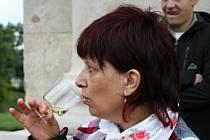Mistrovství světa ve sbírání hroznů museli letos organizátoři z Vinných sklepů Valtice zrušit. Kvůli nedostatečné vyzrálosti hroznů. Účastníci ale přijeli i tak. U Reistny soutěžili v tahání koštýřem či přetahování lanem.