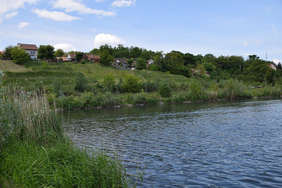 Řeka Dyje v Bulharech