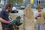 Dřevosochaři tvoří celý týden v centru Břeclavi.