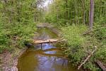 Z výletu k soutoku Dyje s Moravou. Co chvíli se přejíždí mostek přes soustavu kanálů.