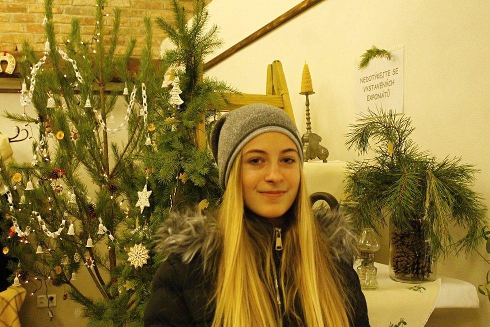 Tradiční vánoční výstavu tentokrát s názvem České Vánoce a ladovská zima uspořádala lanžhotská základní škola v městském muzeu. Každá třída do ní přispěla svým dílem.
