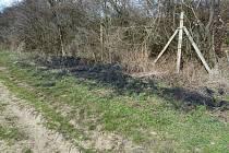Odpadky na Pálavě kazí vzhled oblasti a hlavně škodí mnoha druhům živočichů.