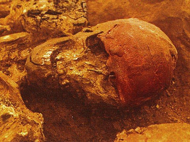 Detail lebky prostředního, pohlavně nevyhraněného, jedince z trojhrobu v Dolních Věstonicích (podle: Jiří A. Svoboda 2010: Dolní Věstonice – Pavlov).