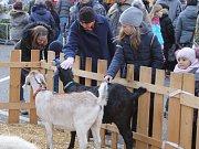 Taneční country skupina Lednický ranč rozparádila letošní lednický vánoční jarmark.
