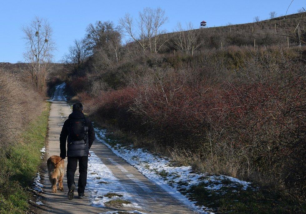 Třetí nejlidnatější kraj v republice je ten Jihomoravský. Na snímku lidé na procházce k rozhledně Maják na Přítluckou horu.