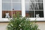 V Kosticích si užili hody alespoň vystavením krojů za okny.