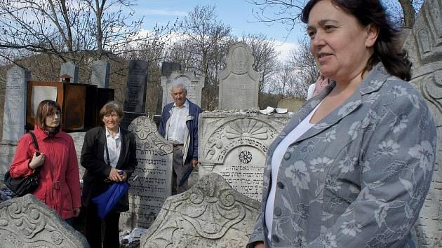 V Mikulově jsou k vidění výstavy Moravské synagogy a Mikulov jako centrum moravského židovství.