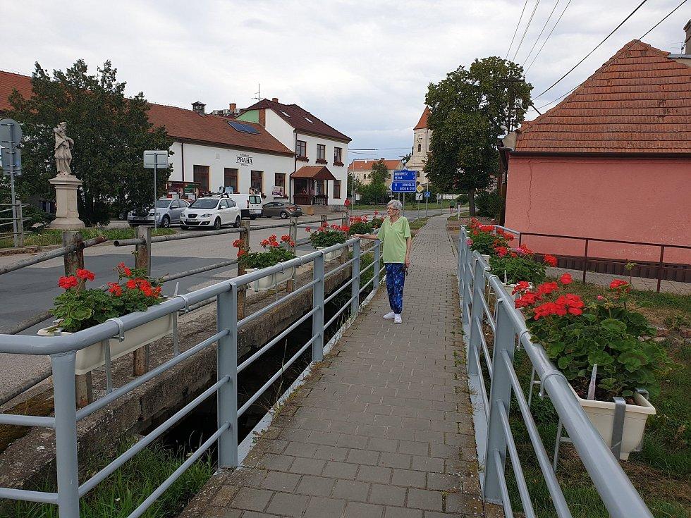 Dolní Dunajovice se pyšní rozkvetlými truhlíky.