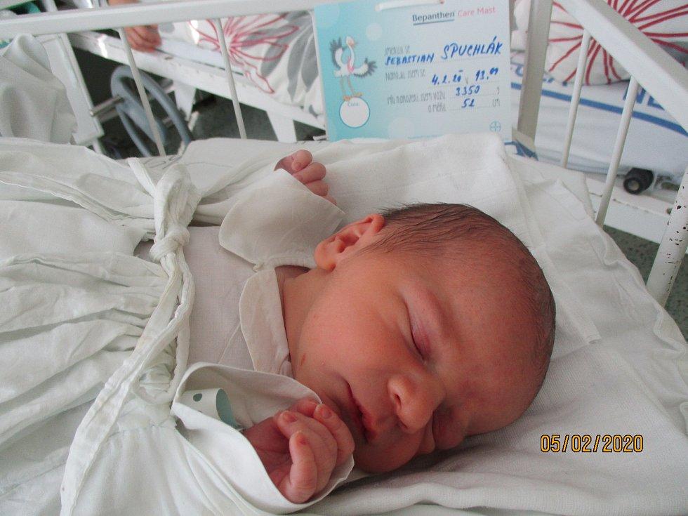 Sebastian Spuchlák, Mikulov, 4. února 2020, 13.09, Nemocnice Břeclav, 52 centimetrů, 3350 gramů. Foto: Monika Švestková