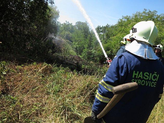 Kolem železnice z Brna na Břeclav hořela v pátek tráva a polní porost. Hasiči likvidovali několik ohnisek na úseku asi dvaceti kilometrů od Holasic na Brněnsku po Šakvice na Břeclavsku. Škody jsou odhadovány v desítkách tisíc korun.