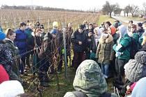 Studenti Střední vinařské školy ve Valticích zabodovali v mezinárodní soutěži v řezu révy vinné.