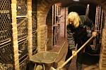 Ve Valtickém Podzemí se v sobotu konal pilotní ročník Sprašosochání. Pořadatelé v labyrintu sklepů navázali spolupráci se sdružením břeclavských výtvarníků. Tři umělci vytvářeli reliéfy ze spraše na téma Žena a víno.