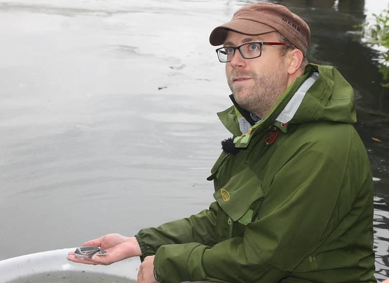 Vodohospodáři vysázeli do Dyje jesetery malé.Ilustrační foto.