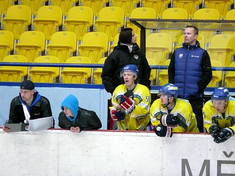 Břeclavští hokejisté - ilustrační foto.