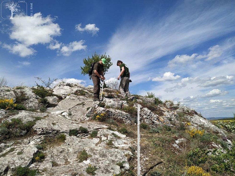 Ochránci přírody na Kočičí skále dávali zábrany na usměrnění pohybu turistů.