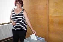 Obyvatelé Bavor rozhodovali v sobotu v místním referendu o tom, zda jsou pro nebo proti výstavbě dálnice D52 přes katastrální území obce. Souhlas vyjádřilo devadesát z celkových 151 účastníků referenda.