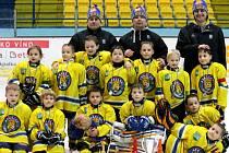 Břeclavští druháci své trenéry nezklamali. Na domácím ledě si mohli po vánocích na krk pověsit stříbrné medaile.
