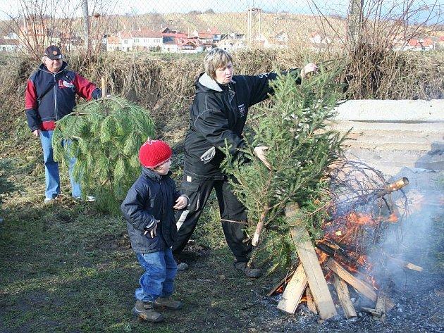 Pálení vánočních stromků v Bořeticích.