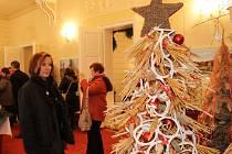 Třicet originálních květinových stylizací vánočních stromků nabídl o víkendu Rybniční zámeček u Lednice. Pestrá expozice, která zahrnovala třeba i vinařský stromek se skleněnými lahvemi, přilákala stovky návštěvníků.