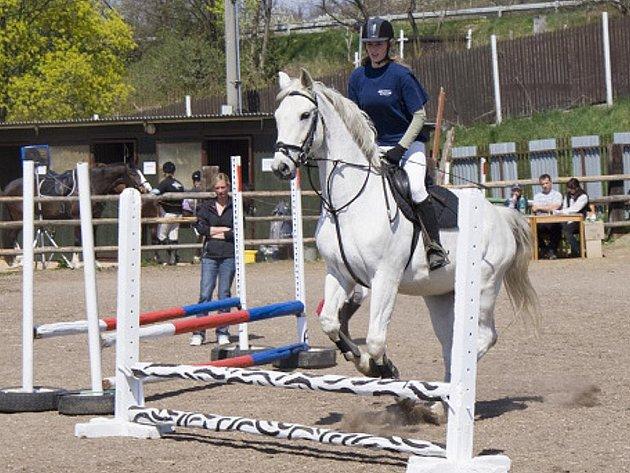 Parkur je o souznění koně s jezdcem.