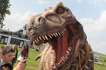 Bohatý hudební program, dinosauří planeta na pláži u velké laguny nebo vinná ulička. V pasohláveckém autokempu Merkur zahajovali v pátek a v sobotu novou sezonu.