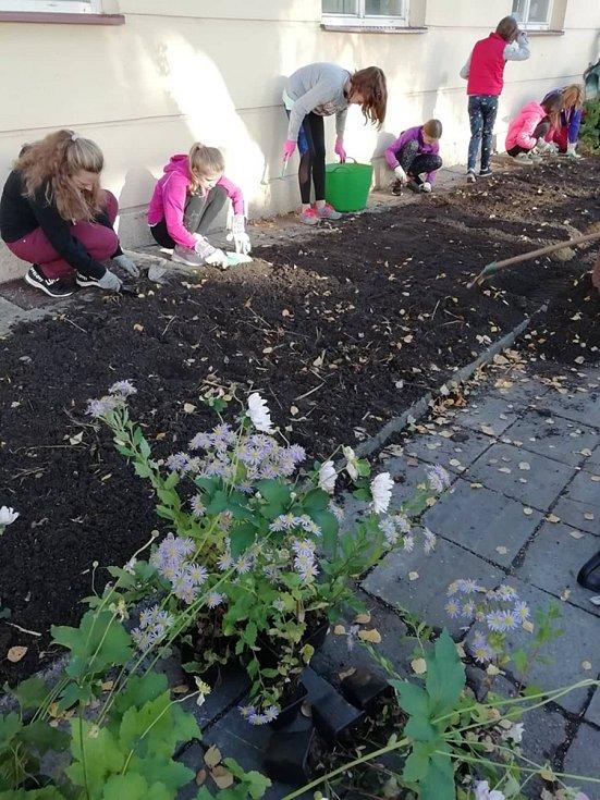 Záhon před Domem zdraví zkrášlí květiny.