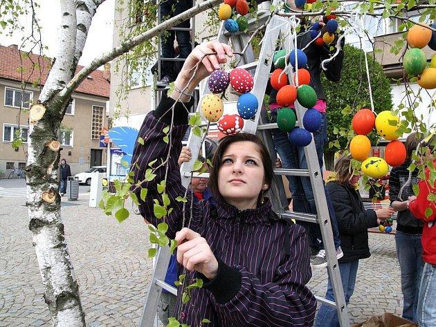 Patnáct set vyfouknutých kraslic visí letos na miroslavském Skořápkovníku