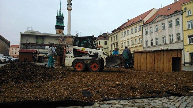 Tradiční ohrádka sovcemi mizí ze znojemského Masarykova náměstí. Kvůli mladíkovi, který se se zvířaty pokusil souložit.