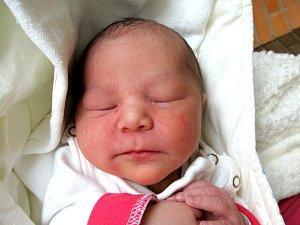 Novorozená miminka Znojemska 39. týdne 2017