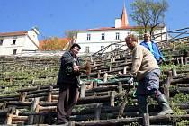 Nově zrekonstruovanou turistickou atrakci nabízí letos milovníkům vína a krásných výhledů do krajiny společnost Lahofer. Lidé mohou navštívit romantický hrádek Lampelberg, který nabízí od začátku června do poloviny září degustaci vína.