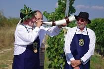 V sobotu odpoledne se vydali členové Spolku přátel hroznové kozy společně s dalšími příznivci vinařských tradic z Havraníků do Popic, aby uzavřeli vinohrady.