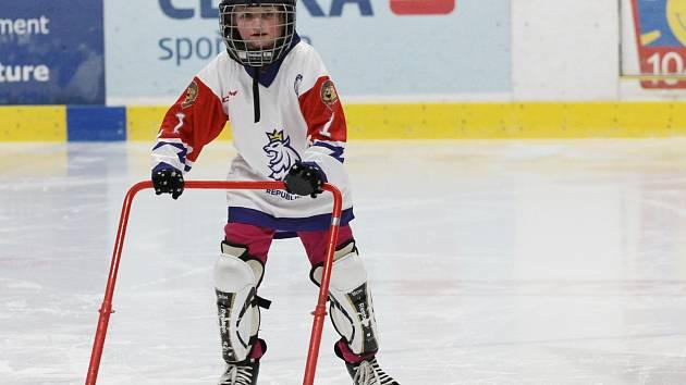 Mládežnický spolek znojemských Orlů uspořádal v Nevoga aréně odpoledne pro děti, které by rády hrály hokej. Akce se konala v rámci Týdne hokeje.