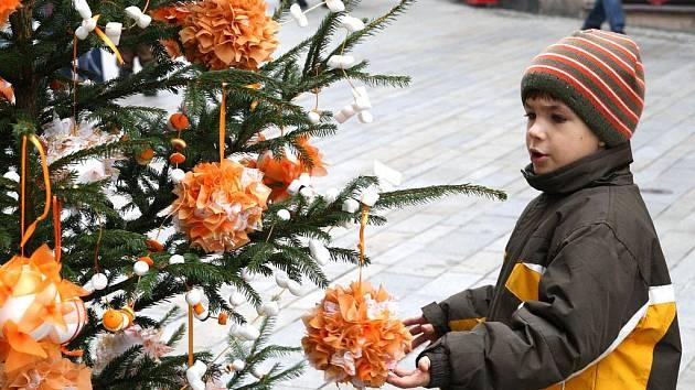 Děti ozdobily stromečky na Obrokové ulici ve Znojmě.