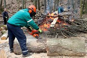 Podobně jako v minuých letech bude se i letos v Gránickém údolí kácet. Padnou nemocné a staré stromy. Radnice počítá se dvěma sty novými stromky i s opravami poškozených cest po těžkých strojích.