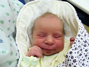 Novorozená miminka Znojemska 44. týdne 2017