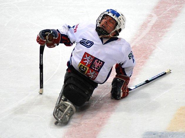 Mistrovství světa ve sledge hokeji.