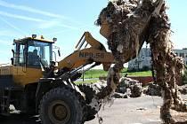 Pod policejním dohledem opustili včera odpoledne území České republiky čtyři kamiony plně naložené nebezpečným odpadem z Rakouska.