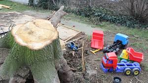 Spadlý strom zničil hračky, děti byly naštěstí pryč. Raději pokácí další smrky