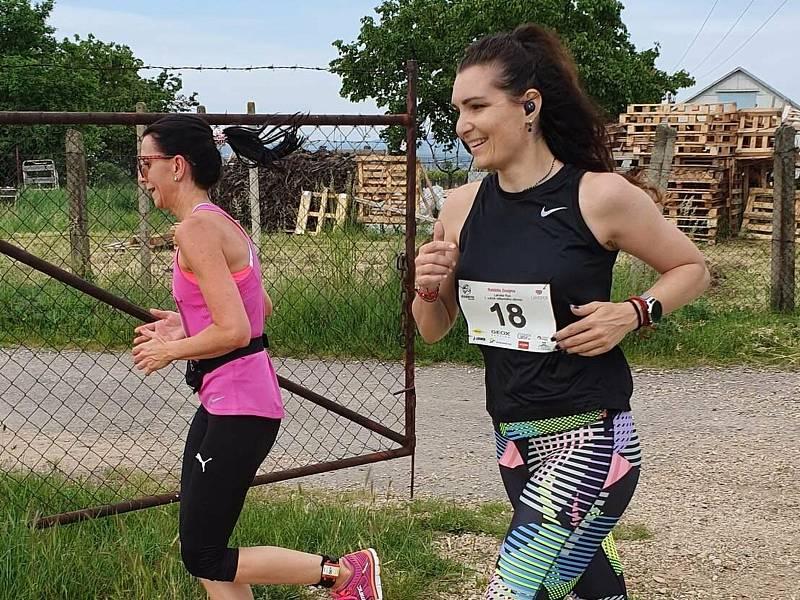 Novinku v rámci Znojemského běžeckého poháru absolvují sportovci již v sobotu. Na trať osmikilometrového Kravák Runu vyrazí o půl desáté dopoledne.