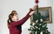 Předměty navozující atmosféru Vánoc a související také se včelařstvím najdou lidé v muezu až do 7. ledna příštího roku.