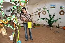 Výstava nabízí přírodu očima klientů Stacionáře