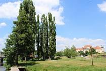 Znojmo plánuje zatraktivnit levý břeh Dyje v okolí Louckého kláštera.