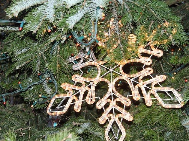 Vánoční strom zdobí Horní náměstí ve Znojmě.
