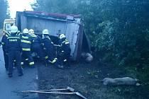 Kamion převážející prasata havaroval v neděli večer u Valtrovic.
