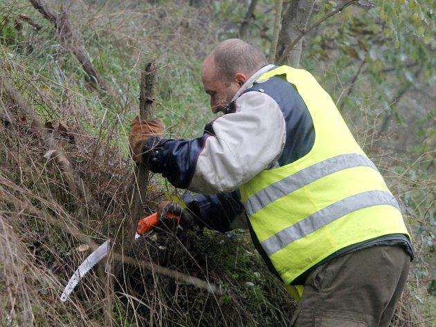 Dělníci v reflexních vestách pracovali ve čtvrtek na odstranění stromů a náletových keřů v okolí silnice v serpentinách mezi Znojmem a Hradištěm.