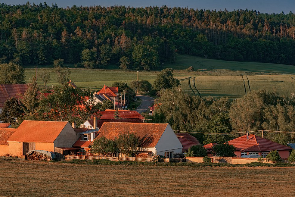 Podvečerní procházka okolím Boskovštejna.