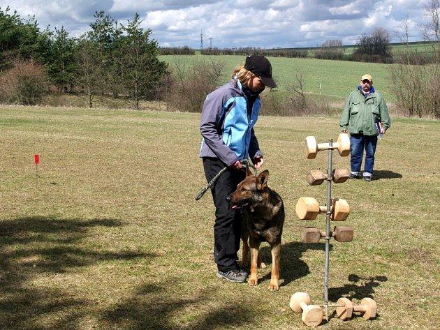 Deset psů a jejich majitelů soutěžilo v sobotu na kynologickém hřišti za kraji Únanova v tradiční oblastní soutěži.