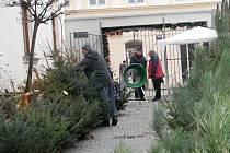 Až do Štědrého dne nabízejí zákazníkům prodejci v regionu vánoční stromky.